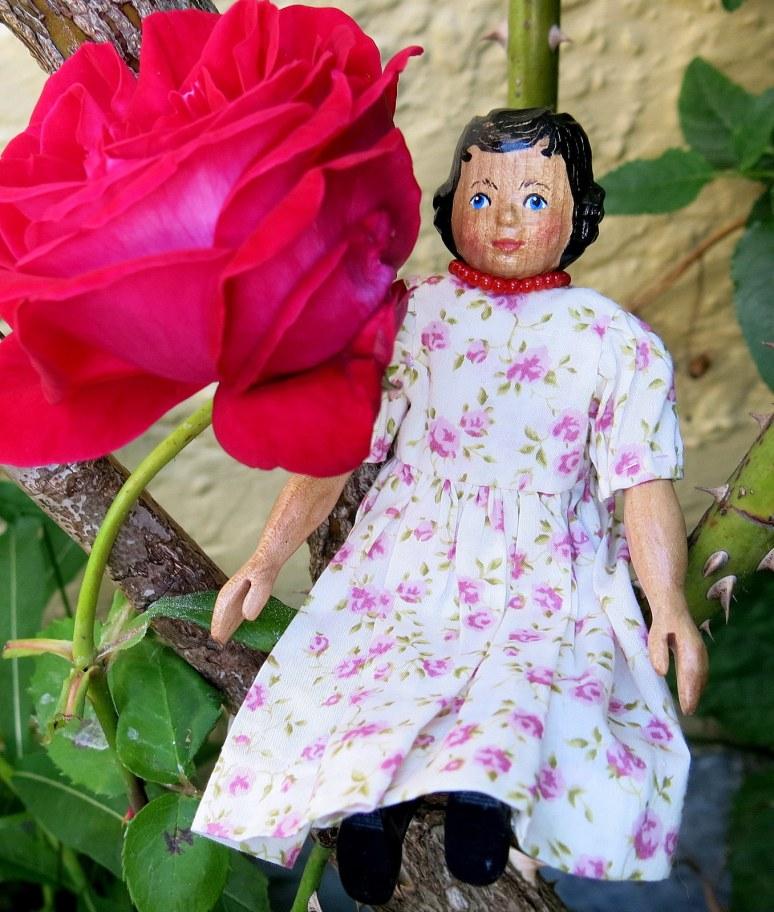 Scree Rose
