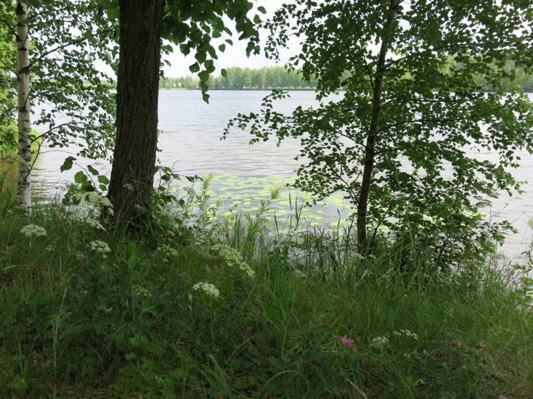 Reservoir Walk
