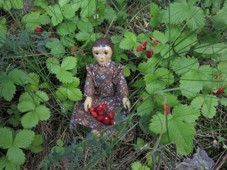 A lapful of Imatra Strawberries