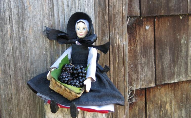 Mary Ann's perch