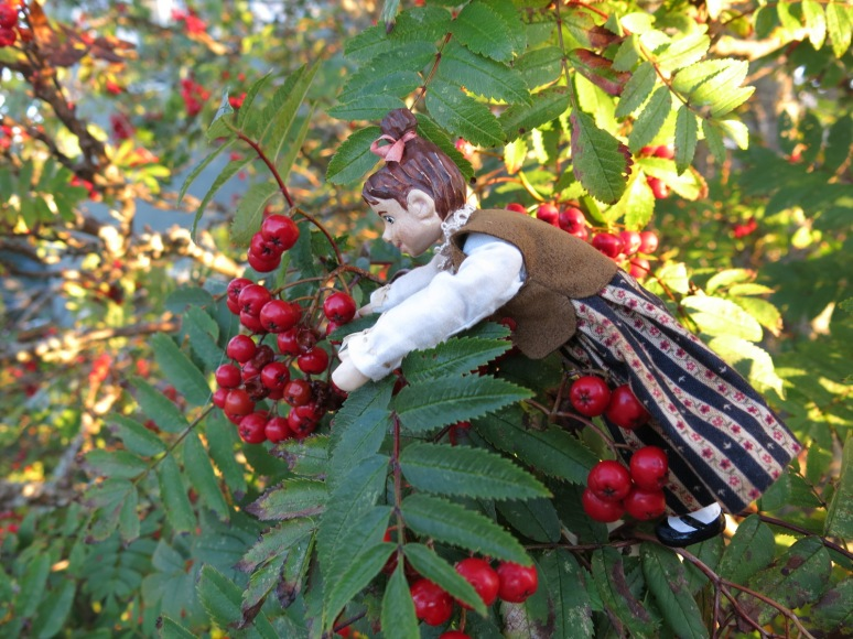 Min enjoys the Ash tree fruit