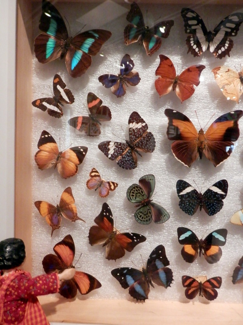 Jewels of the Animal Kingdom