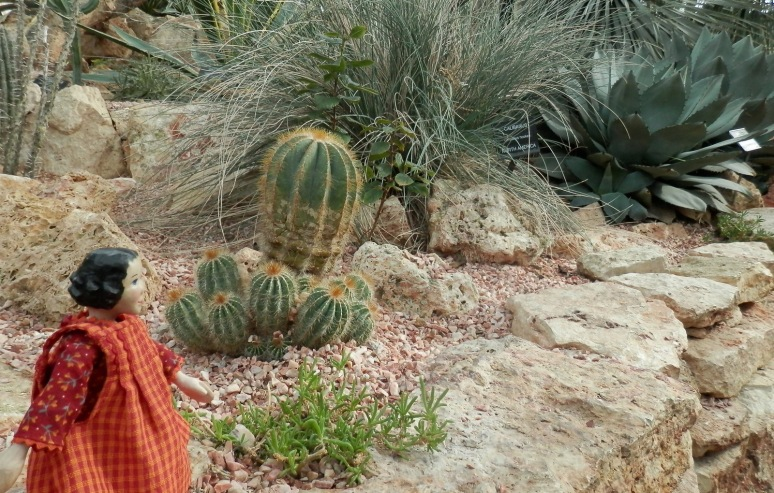 A little Stroll in the Desert