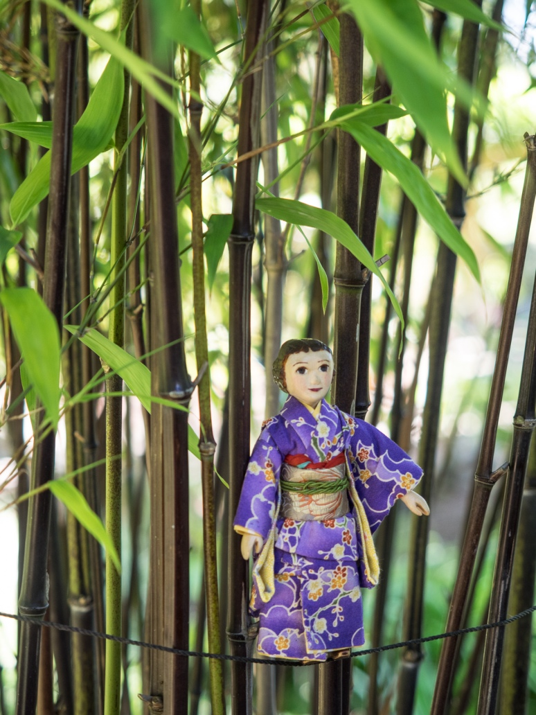 Constance in the Bamboo