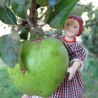 Apple Spas