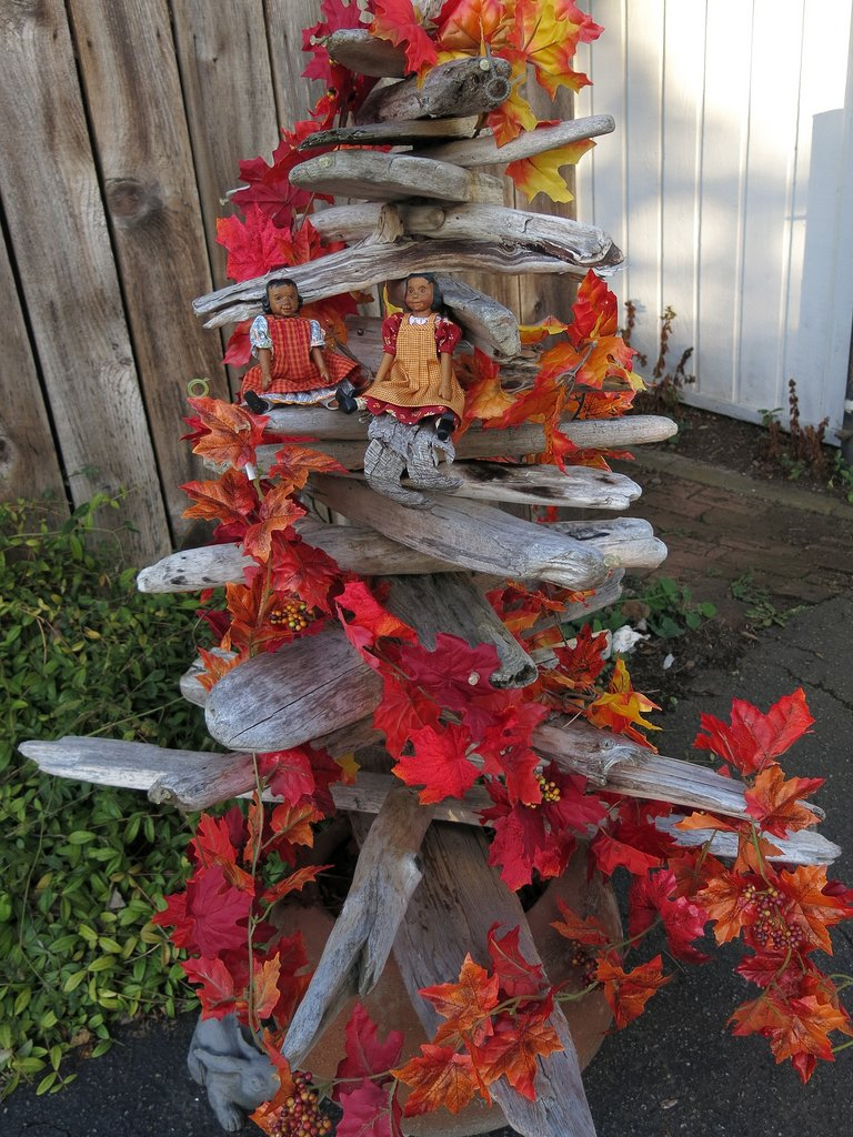Autumn Driftwood Tree