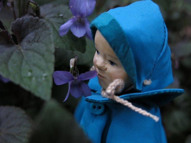 Violet Sniff