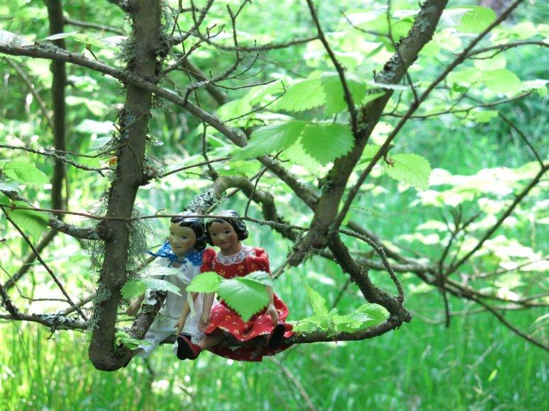 Branch Swing