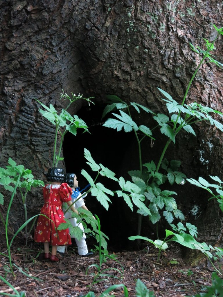 Tree Root Cave