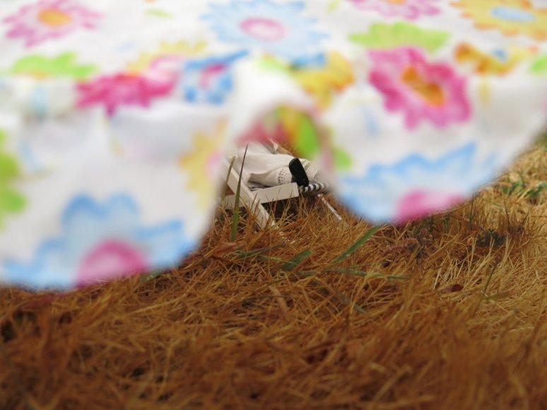 Peeking under