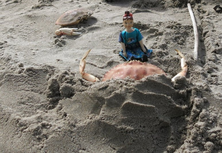 Min and the crab