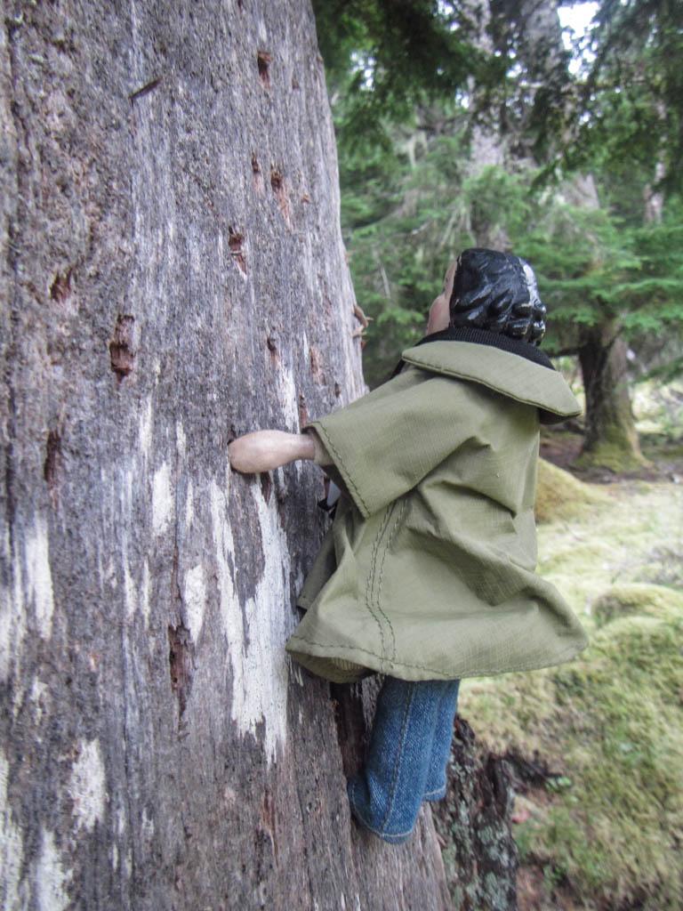 Woodpecker climb