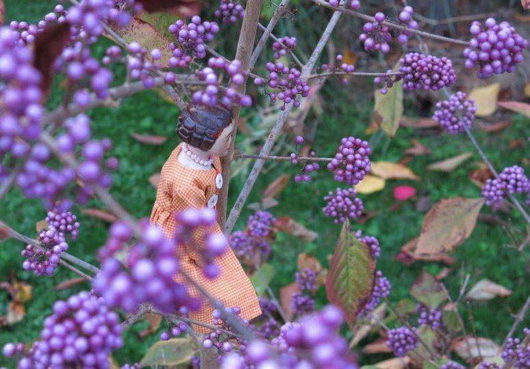 Purpleberry