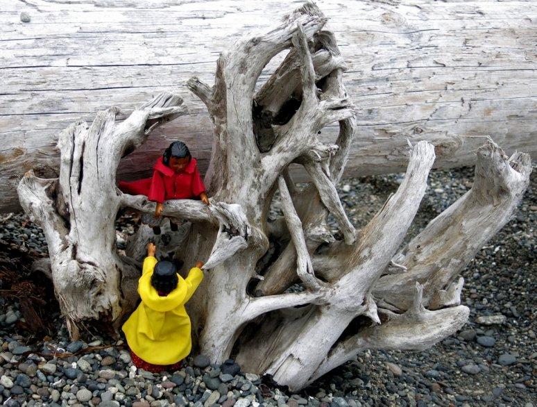 Climbing Driftwood
