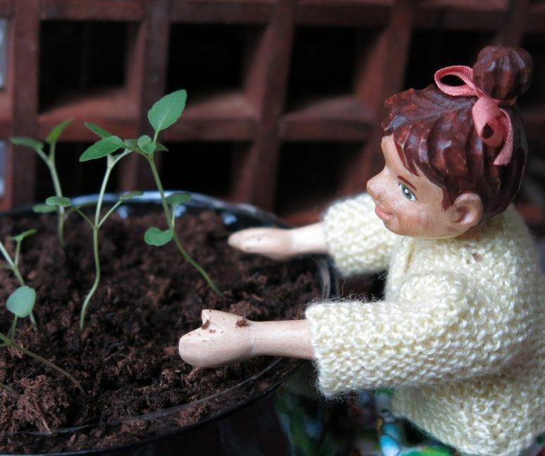 Grow Bee Balm, Grow!