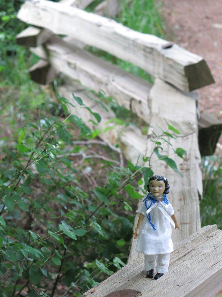 Fence walk