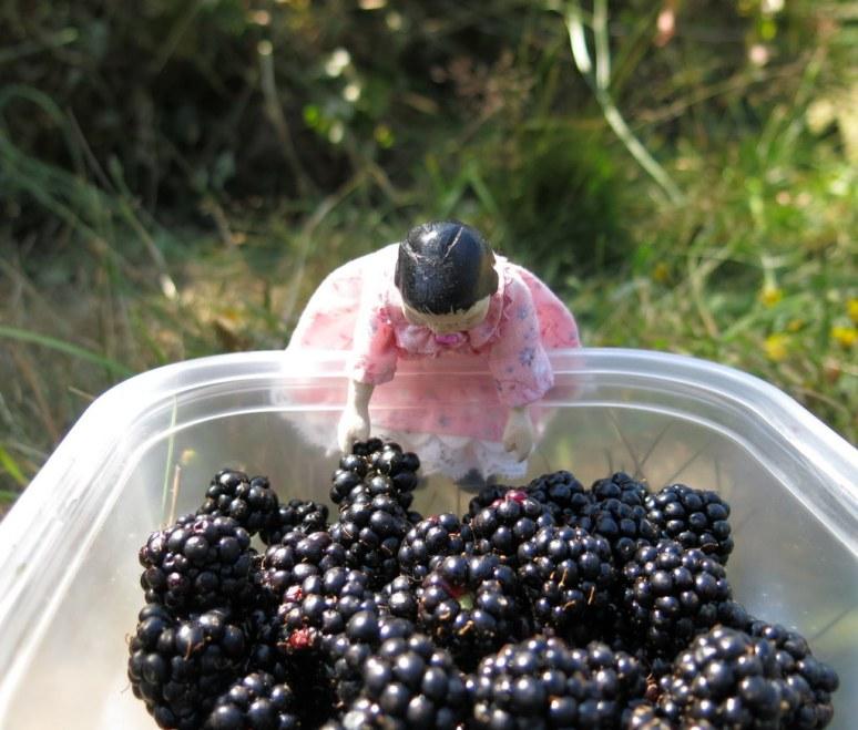 Bucket of Berries