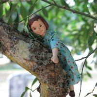 Amelia in the trees