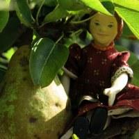 September Pears