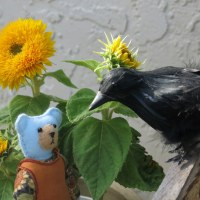 Tansy scares a crow