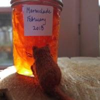 February Marmalade