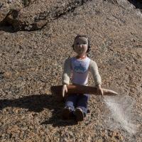 Tansy in De La Beche Inlet