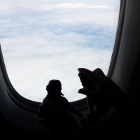 Tansy and Butternut Girl Fly to Haida Gwaii