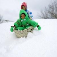A Snowy Adventure