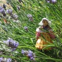 Lavender Tussiemussie